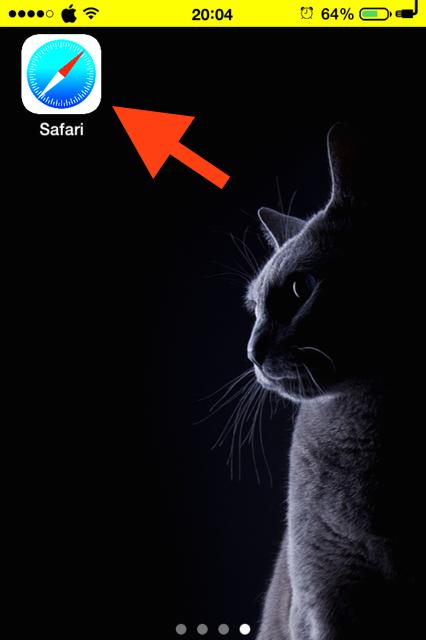 Abre Safari